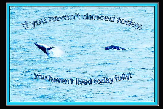 If you haven't danced today by Julia Harwood