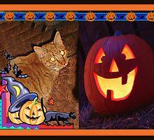 Happy Halloween - Cat 2 by Jane Neill-Hancock