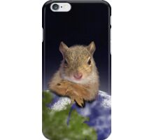 Earth Day Squirrel iPhone Case/Skin