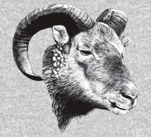Bighorn Ram Kids Clothes