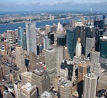 New York - From the Empire State Building by Maureen Keogh