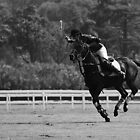 Polo - The Chase by Mark Bolton