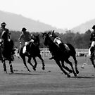 Polo - The Miss by Mark Bolton