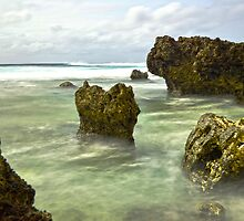 The Golden Reef by Adrian Alford Photography