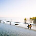 Jetty at Lake Neuchatel Switzerland by Imi Koetz