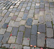 Cobblestones  by Sue Robinson
