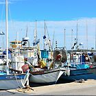 Lavandou fishing boats in port , cote azur, France by 7horses