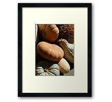 Fall pumpkin fest Framed Print