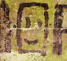 Concrete Smiley  by Vincent J. Newman