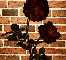 Vintage Roses, Brick Walls by RockandRoll Maker