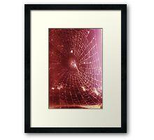 Scarlet Web  Framed Print