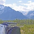 Heading towards the Talkeetna Mountains by Graeme  Hyde