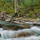 Rocks & Rapids by Mark  Lucey