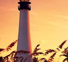 Cape Florida Lighthouse by DDMITR