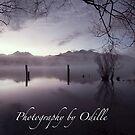 Beautiful Landscapes by Odille Esmonde-Morgan