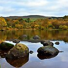 Autumn,Banton Loch, Kilsyth, Scotland by Jim Wilson