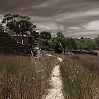 Track into the past by kurrawinya