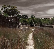Track into the past by Penny Kittel