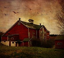 Flight Over the Barn by PineSinger