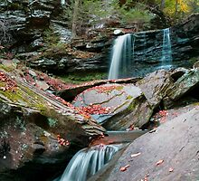 Falling Water Meets Fallen Leaves by Gene Walls