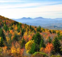 Autumn View of the Grayson Highlands by Karen Peron
