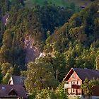 Rigi, Switzerland by Chris Vincent