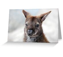Bennett's Wallaby Greeting Card