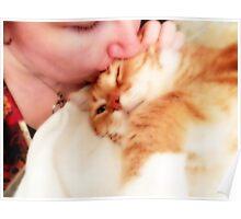 Kitty Kisses Poster