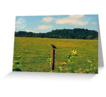 Bird on the fence Greeting Card