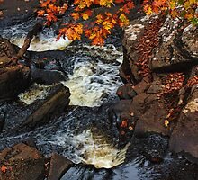 Soulful Autumn Stream by PineSinger