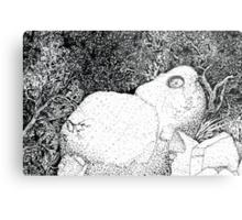 Sentry Rock or Indigenous Multi-tasking Metal Print