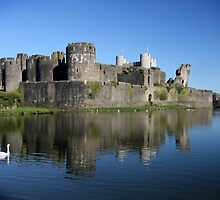 Caerphilly Castle by Carole Gledhill