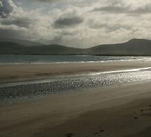 Beach in Ireland by Carole Gledhill