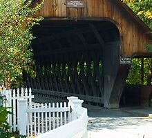 Woodstock Middle Bridge by Susan R. Wacker