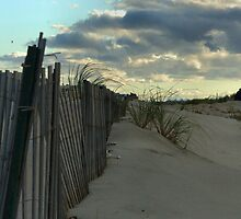 Fence on the Dunes. by Amanda Vontobel Photography
