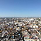 Sevilla from above by Mercedeshall