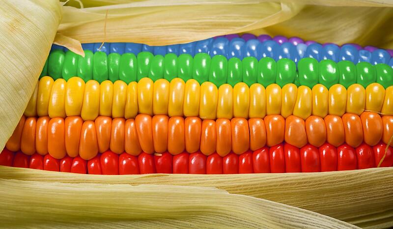 rainbow corn by kitty bitty redbubble
