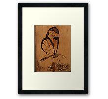 Pyrography: Glasswing Butterfly Framed Print