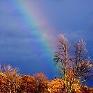 The End of A Rainbow by Larry Llewellyn