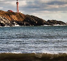 Cape Forchu 2014 by Debbie  Roberts