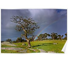 """""""A Rainbow And The Tree"""" Poster"""