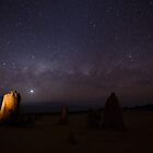 Milky Way Above the Pinnacles w/Shooting Star by Sandra Chung