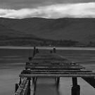 OLD JETTY by andysax