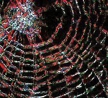 Arachne Unbound by RC deWinter