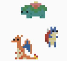Pokemon starters final evolution 8 bit by Showlet