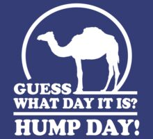 Guess what day it is. Hump Day by keepers