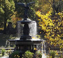 Bethesda Fountain, Central Park,  Autumn Colors, New York City  by lenspiro
