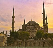 The Blue Mosque, Istanbul by Barbara  Brown