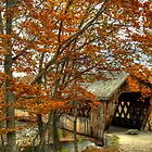Covered Bridge by Monica M. Scanlan