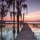 Dock of The Bay by Shari Mattox